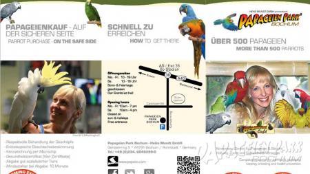 1024x576_ppb-flyer.jpg