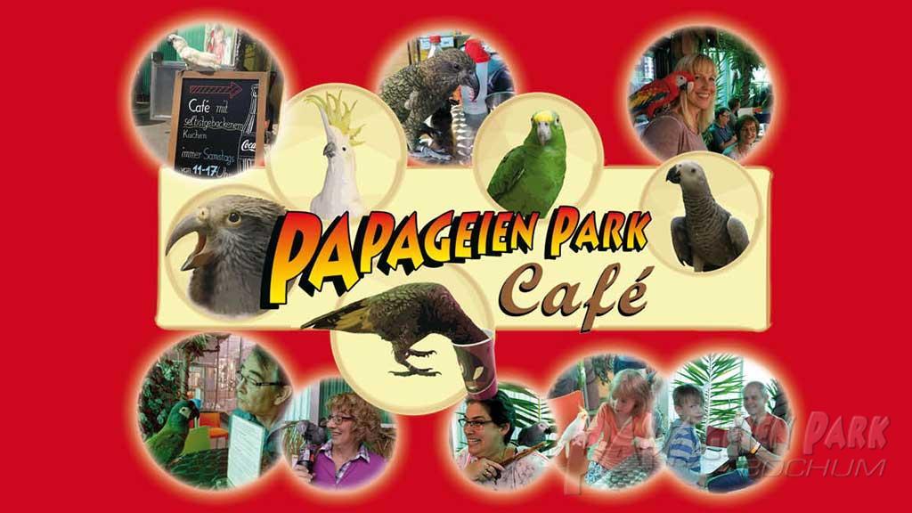 1024x576_papabo-cafe-visual.jpg