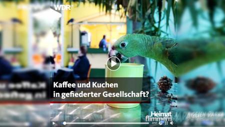 1600x900_2020_02_17_WDR_Heimatflimmern_news_pic.jpg
