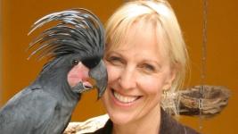 Papageien-Beratung