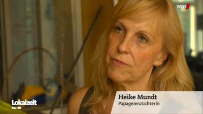 WDR über Papageiendiebstahl im Papageienpark 7.2019