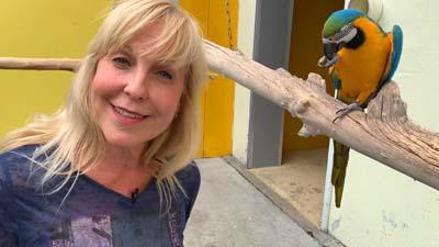 Heike Mundt über Haltung und Ernährung von Aras