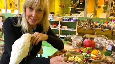 Gesunde Futterportionen für Papageien