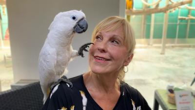 Heike Mundt über Haltung und Ernährung von Kakadus