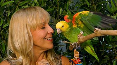 FAQ tiergerechte Privathaltung von Amazonen