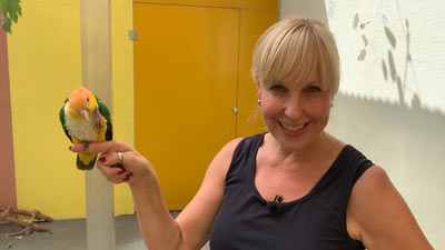 Heike Mundt zeigt problematsiches Verhalten bei Papageien