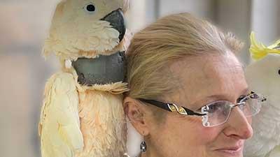 Behandlung einer Hautverletzung eines Kakadus