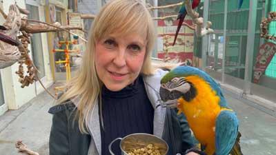 Dürfen Papageien im Frühling in Außenvolieren?