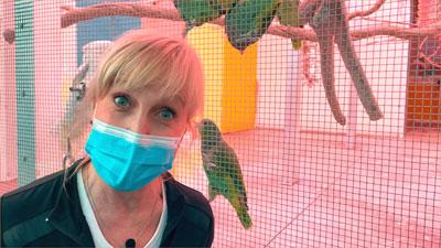'Familienzusammenführung' im Papageienpark