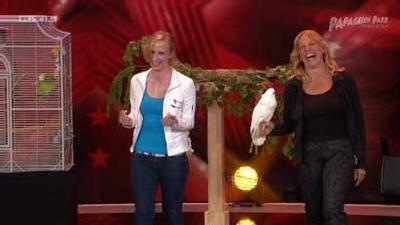 Jacko, der singende Papagei - 1. Auftritt bei RTL Supertalent