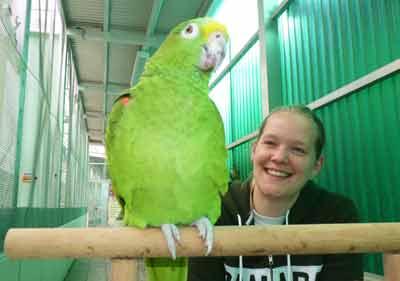 Papageien-Praxistraining-16-6-12