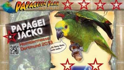 Papagei Jackos Auftritt auf Heimtiermesse Dortmund 2013