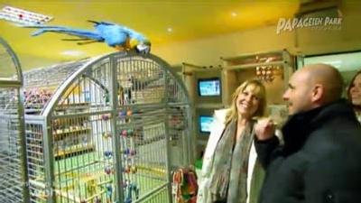 VOX Besuch im Papageienpark