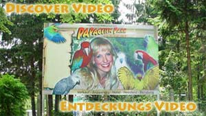 Entdeckungsvideo-Discover Video