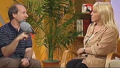 Expertengespräch mit Heike Mundt über Papageien in 3sat