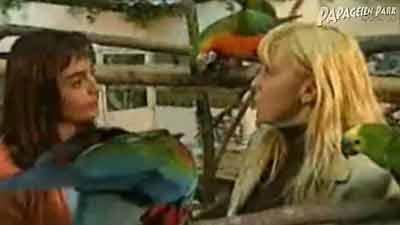 Papageienernährung in VOX Hund-Katze-Maus
