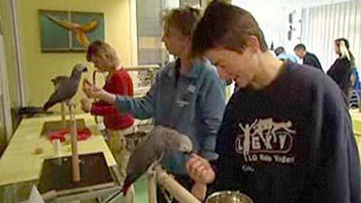Papageien-Praxistraining im Papageienpark in VOX