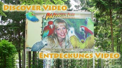 Entdeckungsvideo-Discover-Video_400x225