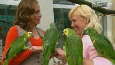 Papageienpark in WDR Tiergeschichten