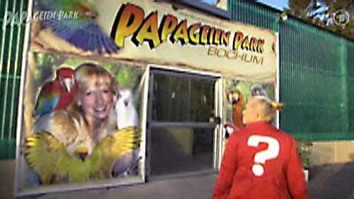 2011_ard_kopfball_papabo_papageiensprechen